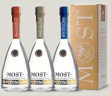 Tosolini Most Amarone (Astucciato)