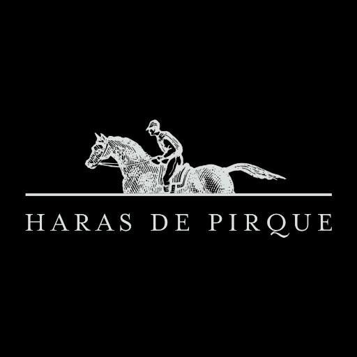 Tutti i prodotti e vini di Haras de Pirque Antinori